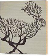 Animal Drawing Wood Print
