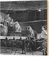Animal Tamer, 1930s Wood Print