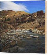 Animas Forks Colorado Wood Print