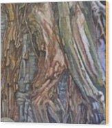 Ankor Temple Trees  Wood Print