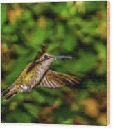 Anna Hummingbird  In Flight 2 Wood Print