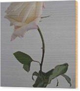 Anna Rose Wood Print