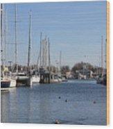 Annapolis - Harbor View Wood Print