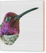Anna's Hummingbird Wood Print by Logan Parsons