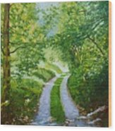 Annecy Forest Afternoon Wood Print