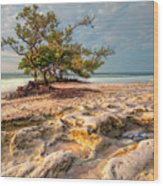 Annes Beach Wood Print