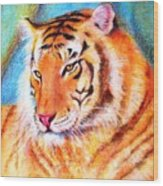 Ano Do Tigre Wood Print