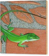 Anole On Chair Tiles Wood Print