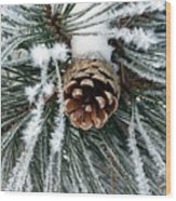Another Frosty Pine Cone Wood Print