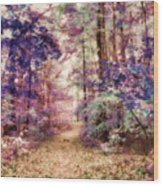 Another Season Xiii Wood Print