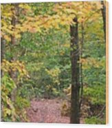 Another Vermont Autumn Wood Print