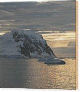 Antarctic Coast Wood Print