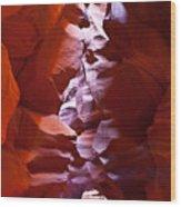 Antelope 19 Wood Print