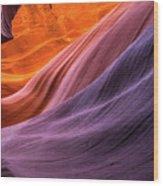 Antelope Rainbow Color Wave  Wood Print