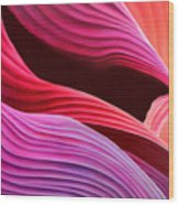Antelope Waves Wood Print