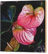 Anthurium Wood Print