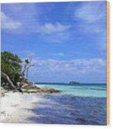 Antigua Beach Wood Print