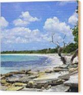Antigua Shoreline Wood Print