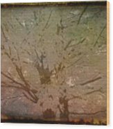 Antique Amber Golden Tree Wood Print