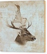Antique Deer Wood Print