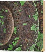 Antique Disc Plow Wood Print