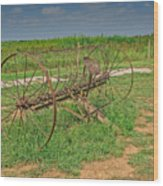 Antique Farm Rake Wood Print