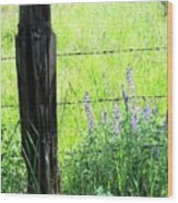Antique Fence Post Wood Print