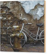Antique Fire Hydrant 2 Wood Print