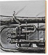 Antique Instrument  Wood Print