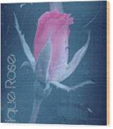 Antique Rose 3 Wood Print