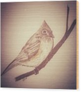 Antique Titmouse Wood Print by Ginny Youngblood