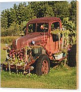 Antique Vehicle As A Planter Wood Print