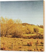 Antique Weathered Countryside Wood Print