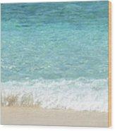 Anyone For A Swim Wood Print