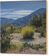 Anza-borrego Desert State Park Desert Flowers Wood Print