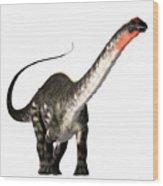 Apatosaurus Profile Wood Print