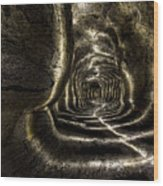 Ape Cave Wood Print
