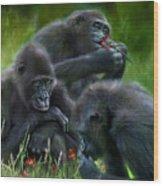 Ape Moods Wood Print