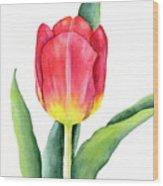 Apeldoorn Wood Print