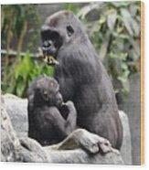 Apes Wood Print