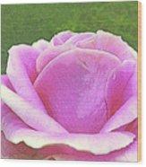 Aphrodite's Rose Wood Print