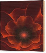 Apo Oriental Poppy Wood Print