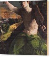 Apollo And Daphne 1524 Wood Print