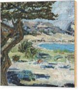 Apollo Bay Wood Print