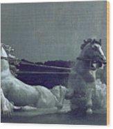 Apollo Fountain Wood Print