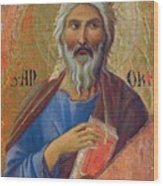 Apostle Andrew 1311 Wood Print