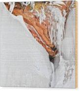 Apostle Islands Frozen Canyon Wood Print