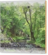 Appalachian Creek Wood Print