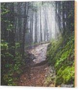 Appalachian Light Wood Print