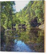 Appalachian Mirror II Wood Print